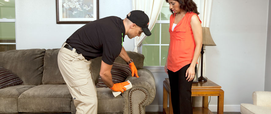 Elizabeth City, NC carpet upholstery cleaning